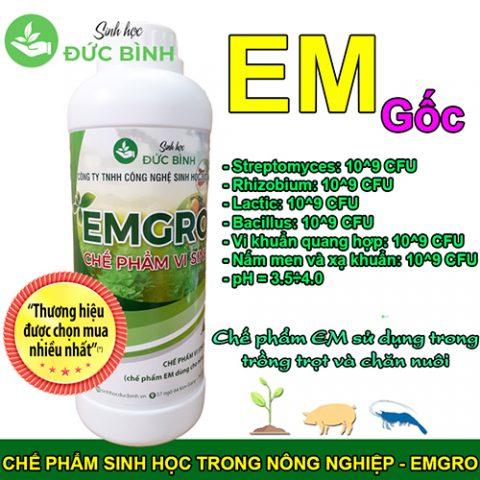 Chế phẩm sinh học EMGRO giúp tiết kiệm chi phí và nâng cao hiệu quả trong hoạt động chăn nuôi cây trồng vật nuôi