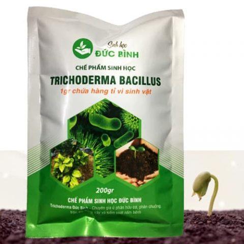 Chế phẩm Trichoderma Bacillus Đức Bình có giá bán chỉ 20k/gói 200gr