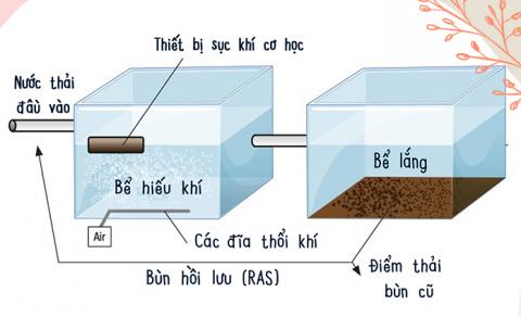 Sử dụng bùn hiếu khí - thiếu khí để xử lý